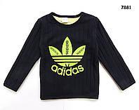 Теплая кофта Adidas для мальчика. 100, 120 см 100 см - 1 шт.