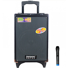 """Аккумуляторная Bluetooth колонка Temeisheng A8-2T 8"""" 100Вт с микрофоном    Акустика с усилителем автономная"""