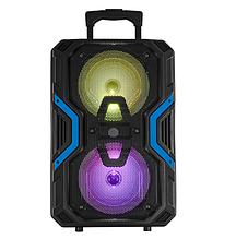 """Акустическая колонка Ailiang KOLAV-2813 аккумуляторная Bluetooth 8""""х2 20Вт   Беспроводная  аудиосистема"""