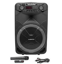 Акустическая система Goldteller GT-6023 аккумулятор Bluetooth с микрофоном 80Вт   Беспроводная колонка