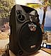 Колонка Temeisheng SL12-14 150Вт беспроводная с видеомикрофоном-суфлером | Караоке спикер bluetooth, фото 6