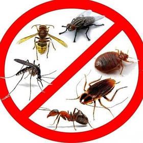 Засоби від гризунів та комах