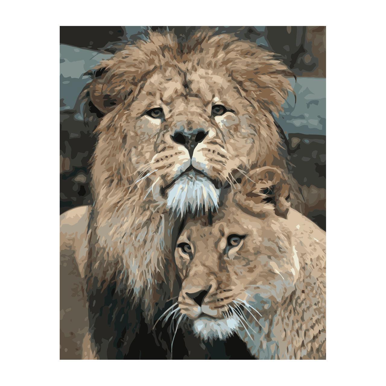 Картина по номерам Лев с львицей  Strateg 40 х 50 VA 2848
