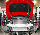 Декоративно-защитная сетка радиатора Audi A5 фальшрадиаторная решетка, бампер, фото 2