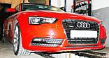 Декоративно-защитная сетка радиатора Audi A5 фальшрадиаторная решетка, бампер, фото 5