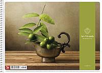 Альбом для малювання Школярик 40листов пружина.ПДВ Коні/квіти/міста PB-SC-040-113