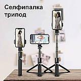 Набор блогера 5 в 1 лампа RGB Light Stick Штатив 2м Селфи-трипод Петличный микрофон Проекционный светильник, фото 8