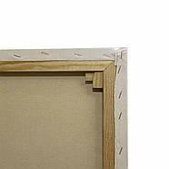 Полотно грунтоване Творець 20 х 50 см, на підрамнику, дрібне зерно, фото 2