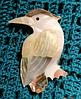 Брошь брошка дятел птица ракушка офигенная, фото 5