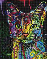 Барвистий кіт