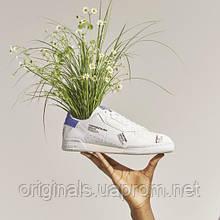 Чоловічі кросівки Adidas Continental 80 GV7669 2021/2