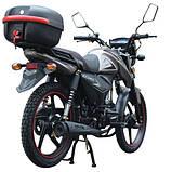 Мотоцикл SP125C-2CM, фото 5