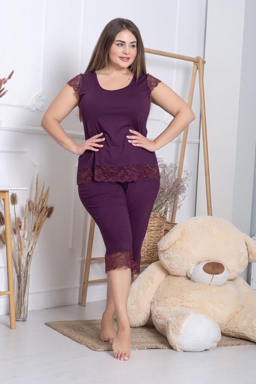 Жіноча піжама з мереживом великі розміри XXL+ Пс1113 Сливовий