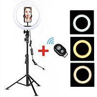 Кольцевая Led лампа Ac Prof 26,1 см со штативом 2.1м набор для съемок + Пульт Bluetooth