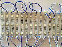 Светодиодный Модуль SMD 5050 Белый  Синий
