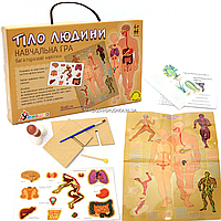 Настільна гра Умняшка навчальна з багаторазовими наклейками «Тіло людини», від 6 років (КП-004у)