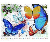 Схема для бисера бабочки, А3, схемы под бисер