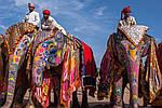 Групповой тур по Индии «Золотой треугольник Индии» 6 дней, фото 3