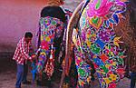 Групповой тур по Индии «Фестиваль красок Холи в Индии» на 6 дней , фото 5