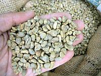 Кофе зеленый в зернах Индонезия Суматра Мандхелинг (ОРИГИНАЛ) арабика Gardman (Гардман), фото 1