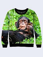 Світшот жіночий 3D Прикольна мавпочка/Свитшот Шимпанзе на отдыхе
