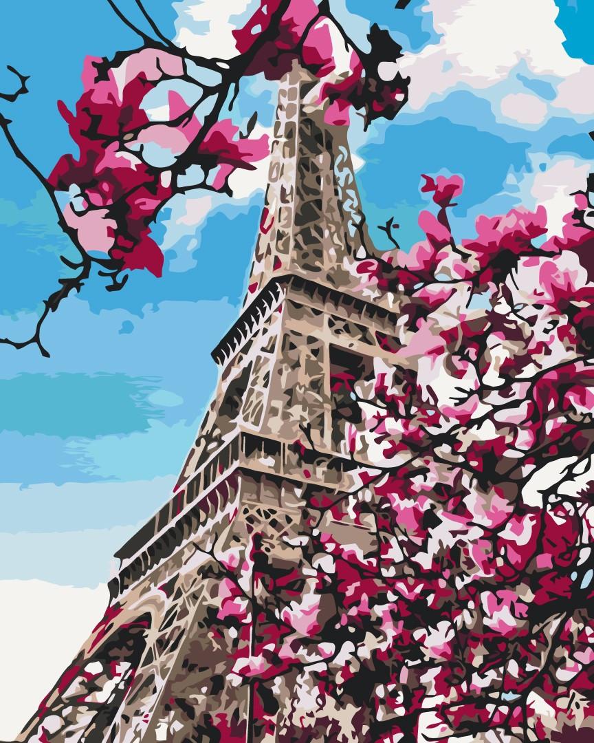 Цвітіння магнолій в Парижі