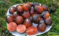 Томат Гаргамель, насіння, фото 1