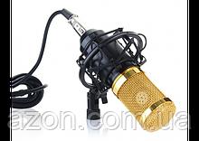 Мікрофон студійний M-800