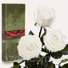 Три долгосвежих троянди Білий Діамант 5 карат на короткому