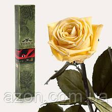 Долгосвежая троянда Жовтий Топаз 7 карат (середній стебло)