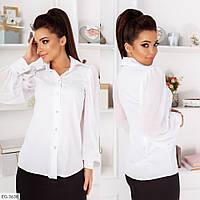 Блуза жіноча класична красива з рукавами з легкого шифону р-ри 42-46 арт. 275