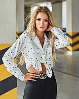 Жіноча класична сорочка в горошок біла (молоко), фото 1
