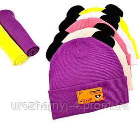 """Дитячий подвійний трикотажний комплект шапка і хомут з нашивкою """"Mickey"""" 46-50р код 5081 Glory-kids"""