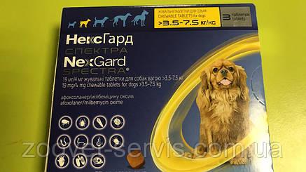 Жевательные таблетки от глистов, блох и клещей для собак Merial Нексгард Спектра S (3.5-7.5кг) 1 шт, фото 2