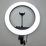 Кільцева лампа RL-18 II 512 LED зі штативом чохлом і пультом Кольцевое освітлення для зйомки набір блогера, фото 3