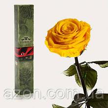 Долгосвежая троянда Сонячний Цитрин 5 карат на короткому стеблі