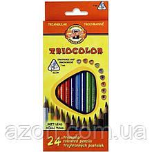 Олівці кольорові Koh-i-Noor 3134 Triocolor, 24шт, set of triangular coloured pencils (3134024004KS)