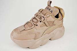 Кросівки демісезонні бежеві Prima d'arte 2759 40 шкіра/замша