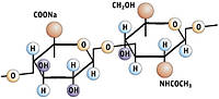 Гиалуроновая кислота, натрия гиалуронат