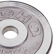 Млинці 30мм 2,5 кг (диски) хромовані HIGHQ SPORT, фото 2