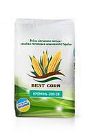 Насіння кукурудзи  Кремінь 200СВ (ФАО 210)