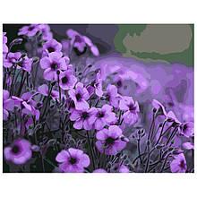 Картина по Номерам Фиолетовые цветы 40х50см Strateg