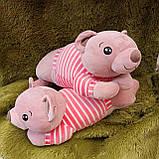 Плед іграшка подушка 3в1 Собачка | Іграшка дитячий плед | Іграшки-Подушки | М'яка іграшка Хаскі Помаранчевий, фото 5