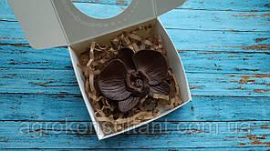 """Шоколадний набір """"Орхідея"""" 40 грам в упаковці"""