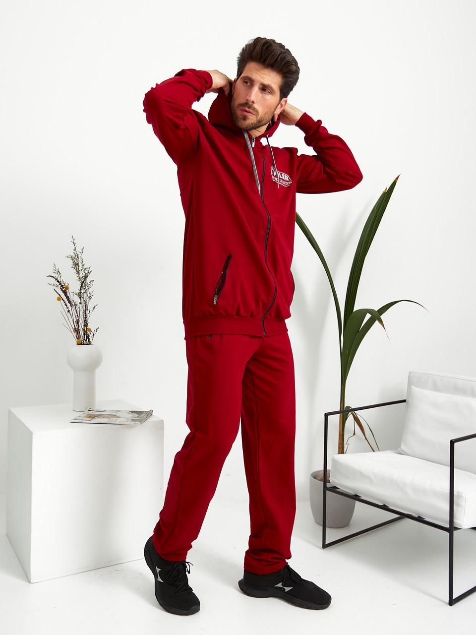 Чоловічий подовжений демісезонний трикотажний спортивний костюм на блискавці з капюшоном Tailer Високий Зріст 50-58