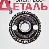 Шестерня распредвала Д-240 МТЗ 240-1006214-А, фото 2
