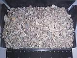 Черепашка кормова мінеральна кормодобавка), фото 4
