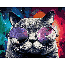 Картина по Номерам Космический кот 40х50см Strateg