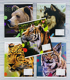 Зошит 48 аркушів клітинка Animal №765021 24601Ф+ 1 вересня Україна