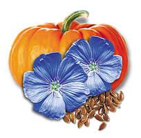 Льняное масло с экстрактом тыквенных семечек 1 л.